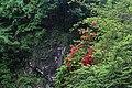 文成峡谷景廊风光 - panoramio (5).jpg