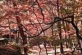 昇仙峡 - panoramio (50).jpg