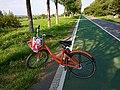 未央 河堤路和自行车.jpg