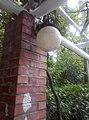 植物園中的植物及樹木花草(包括歷史遺跡)-11.jpg