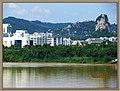 河东新区 - panoramio (5).jpg