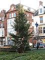 -2019-12-01 Christmas Tree in the town of Cromer, Norfolk.JPG