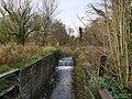 -2020-12-01 Looking north along Briggate Lock from Station Road, Briggate, Norfolk.jpg