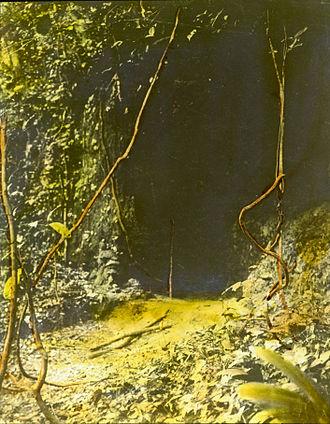 Odinani - Entrance to the cave of the Ibini Ukpabi oracle at Arochukwu, 1900s.