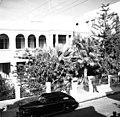 - ברחוב הגליל 5 Talbot House - פתיחת הוסטל לחיילים בתל אביב-ZKlugerPhotos-00132kz-090717068512a7b9.jpg