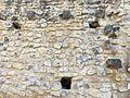 029 Mur de l'antic monestir de Santa Maria de Vallclara (Cabacés).JPG