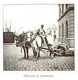 038 Chevaux et charretier