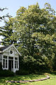 0 Kalmthout - Arboretum 110801 (7).JPG