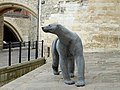 10.Haste-Polar Bear at the Tower of London.jpg