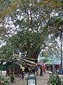 144 หมู่ 7 Tambon Ao Nang, Amphoe Mueang Krabi, Chang Wat Krabi 81000, Thailand - panoramio (16).jpg