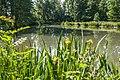 180522-01 Der Mühlbachsee im Fünfmühlental.jpg