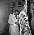 1958 visite d'une délégation INRA au Haras du Pin Cliché Jean Joseph Weber-63.jpg