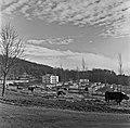 1960 Parc à taureaux du CNRZ Cliché Jean-Joseph weber-3-1.jpg
