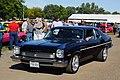 1973 Buick Apollo (29177164463).jpg