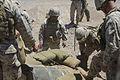 1st Marine Division, 3rd Combat Engineer Battalion, Desert Scimitar 2014 140513-M-TJ655-048.jpg