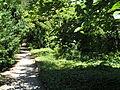 20090824 Vacantie 0271 Jena.jpg
