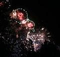 2010 07 14 bastille day fireworks 065 (4839485944).jpg