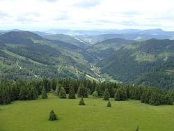 2012 Schwarzwald 108 Oberes Wiesental.JPG