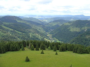 Wiese - The glacially formed upper valley of the Wiese from Seebuck to the SW