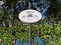 2013-09-02 Weinberg, Charles-de-Gaulle-Straße 53, Bonn-Gronau IMG 0906.jpg