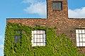 2013-365-144 Plants vs Buildings (8820578110).jpg