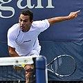 2013 US Open (Tennis) - Qualifying Round - Victor Estrella Burgos (9737760646).jpg