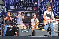 2013 Woodstock 130 Cała Góra Barwinków.jpg