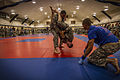 2014 Army Reserve Best Warrior Competition - Combatives 140626-A-DS355-033.jpg