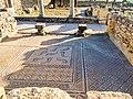 20151117 Morocco 2375 Volubilis sRGB (24116070379).jpg