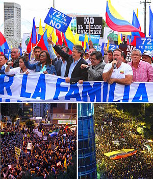 2015 Ecuadorian protests.jpg