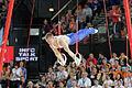 2015 European Artistic Gymnastics Championships - Rings - Denis Ablyazin 10.jpg