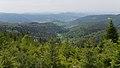 2016.05.21.-07-L76b-Gernsbach-Kaltenbronn--Blick auf Gernsbach.jpg
