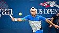2017 US Open Tennis - Qualifying Rounds - Radu Albot (MDA) (27) def. Frank Dancevic (CAN) (36337883363).jpg