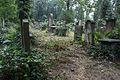 2329viki Cmentarz Żydowski na Ślężnej. Barbara Maliszewska.jpg