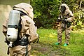 26th MEU CBRN and EOD collaborate during integrated training 170818-M-WP334-0020.jpg