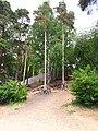3121. Берег Среднего Суздальского озера.jpg