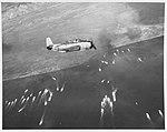 80-G-288932 Leyte Invasion, October 1944.jpg