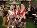 AVN 2008 Three Models.jpg