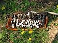 A thrown away typewriter.JPG