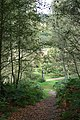 Abinger Roughs, path to Wilberforce Memorial - geograph.org.uk - 1508464.jpg