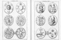 Abraxas seu Apistopistus - Talisman pg.068.png