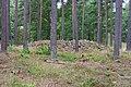 Adelöv 12-2, Vassrödjorna - KMB - 16001000260464.jpg