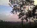 Alajuela, Costa Rica - panoramio (1).jpg