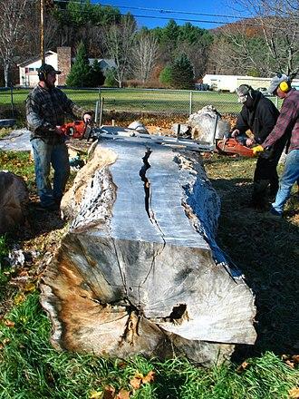 Chainsaw mill - An Alaskan chainsaw mill