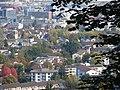 Albisrieden - panoramio.jpg