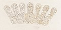 Album of designs for embroidery- bodices, gauntlets, caps, bags, page 50 (recto) MET DP165319.jpg