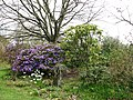 Alby Gardens - geograph.org.uk - 774362.jpg