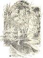 Almanaque de las portenas 1895 (page 52 crop).jpg