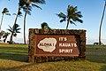 Aloha Hawaii (46227619492).jpg