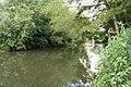Along the cut - geograph.org.uk - 1417710.jpg